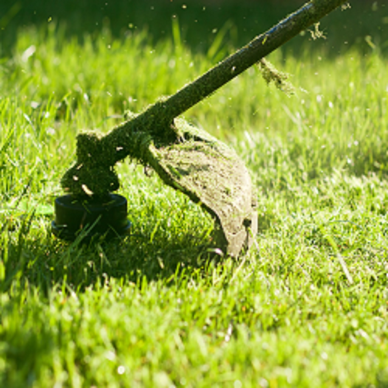 services-grounds-maintenance-strimmer
